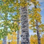 autumngoldbyhollyburghardt